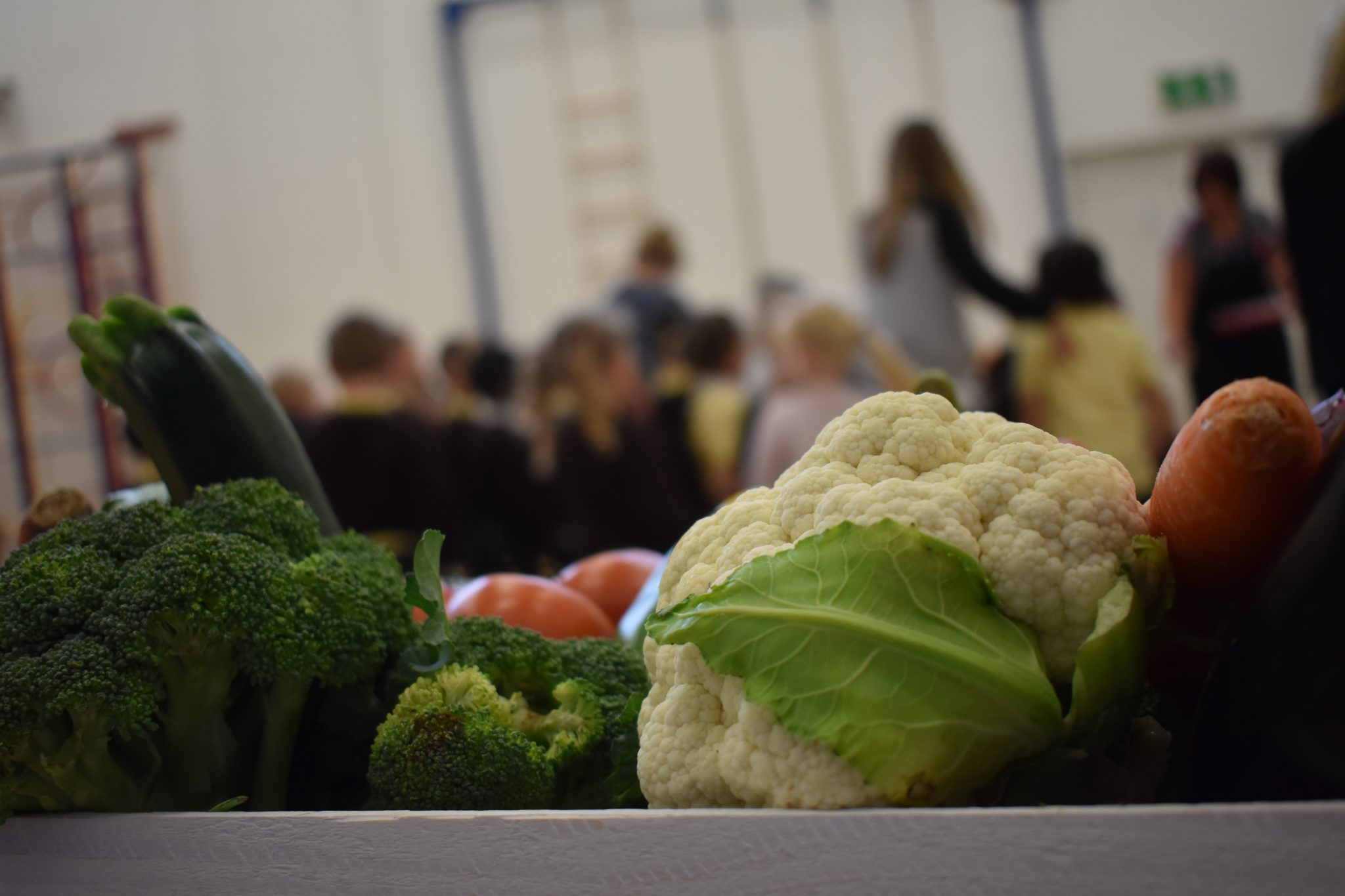 School Dinners and Packed Lunches
